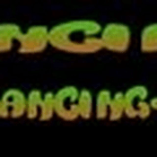 Radio radiodancing