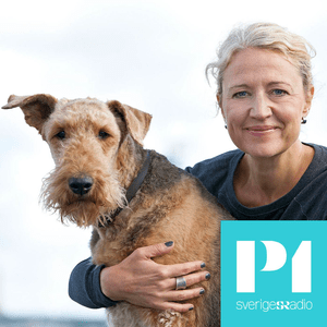 Hundland - Sveriges Radio