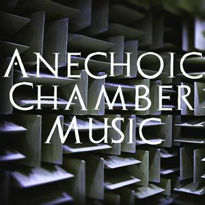 Radio Anechoic Chamber Music