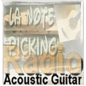 Radio Acoustic Guitar Radio