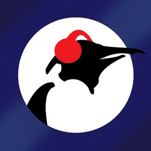 Radio Pinguin Blues