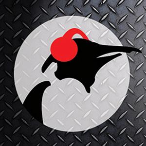 Radio Pinguin Aardschok